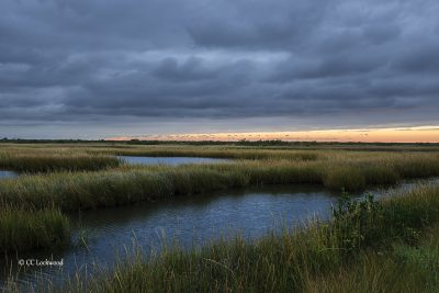 Sunset under a moving cold front above the marsh on the bay side of Grand Isle. Sunset Wedge. Page 90.